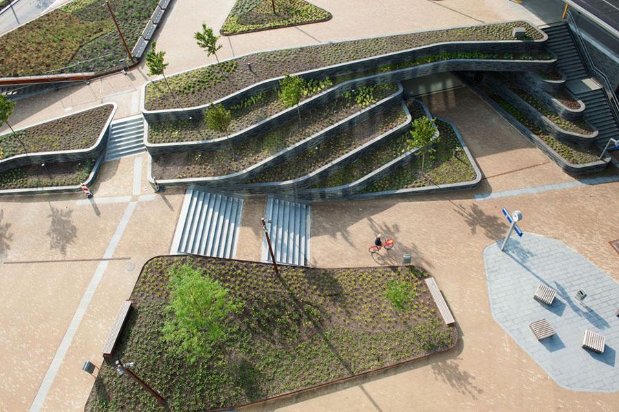 Groene daken in Groningen